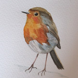 Watercolour Robin