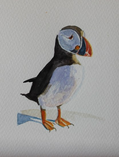 watercolour of puffin