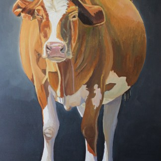 Painting of a Welsh Cow