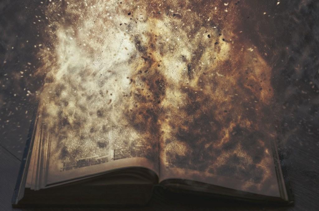 bayern, book, shannon hale, enna burning, the goose girl