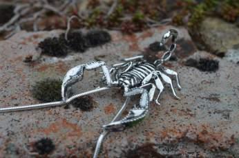 Sheerness Scorpion 1 - Emma Keating Jewellery__sm