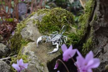 Sheerness Scorpion Orn3 - Emma Keating Jewellery__sm