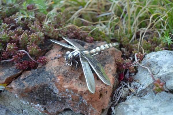 Dragonfly Brooch 3s - Emma Keating Jewellery