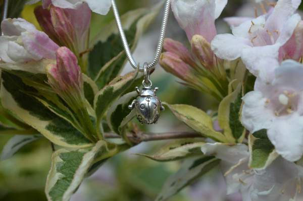 Ladybird Pendant 7s - Emma Keating Jewellery