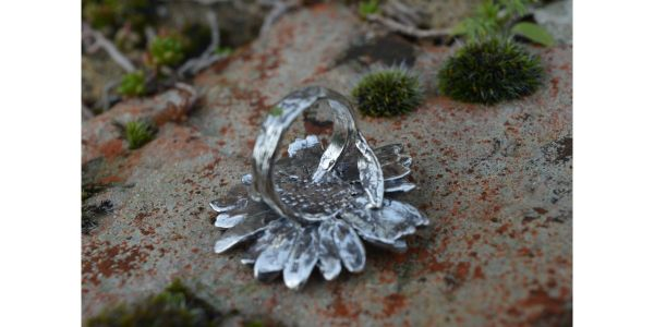 Oxeye Daisy Ring in Sterling Silver by Emma Keating photograph of back