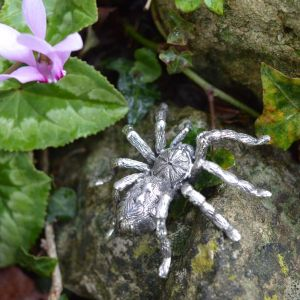 Pumpkin Patch Tarantula Ornament in Sterling Silver by Emma Keating photographed on rockery with leaves and flowers