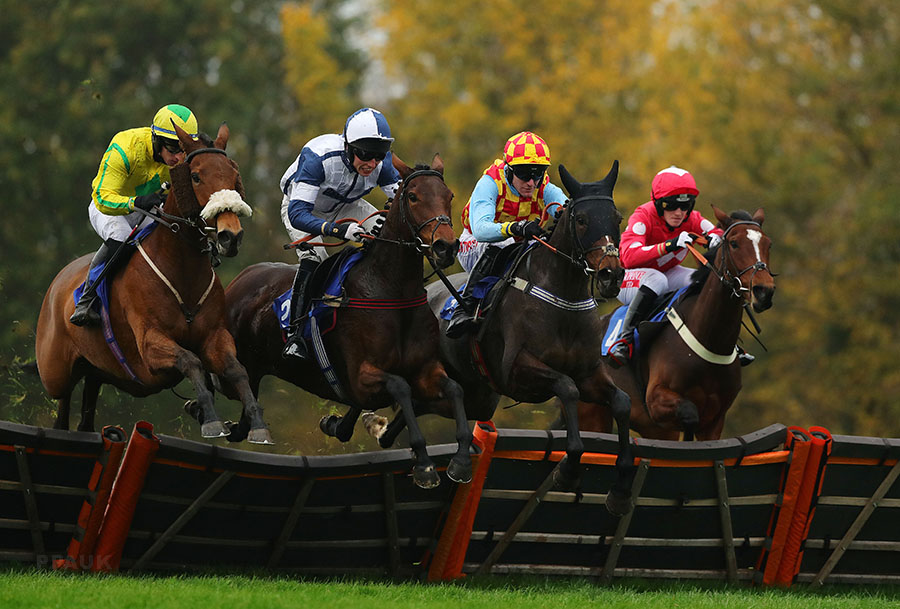 Taunton Races, Taunton, UK – 15 Nov 2018