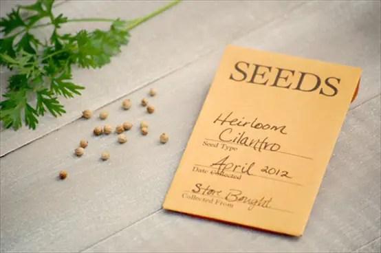 new ideas for weddings