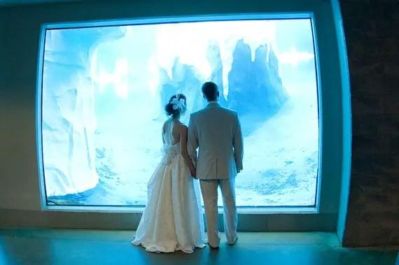 bride and groom at aquarium