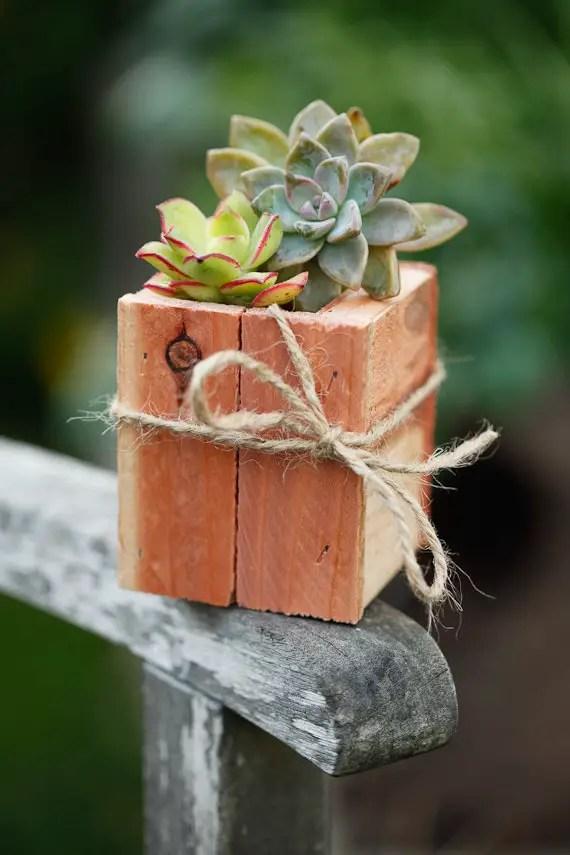 Diy succulent centerpieces handmade wedding emmaline