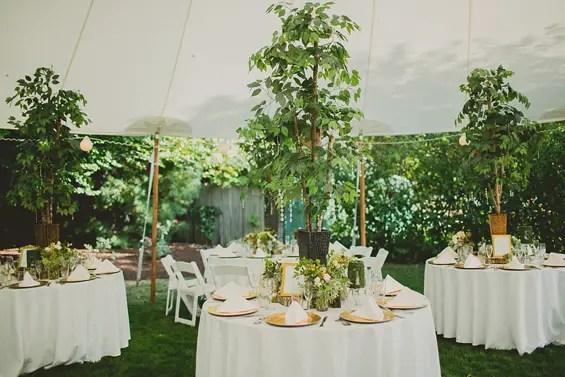 Ashley Caroline Photography - Connecticut Backyard Wedding