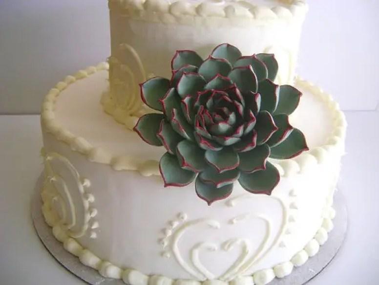 succulent-cake-topper
