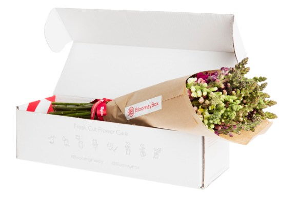 biweekly-bloomsybox