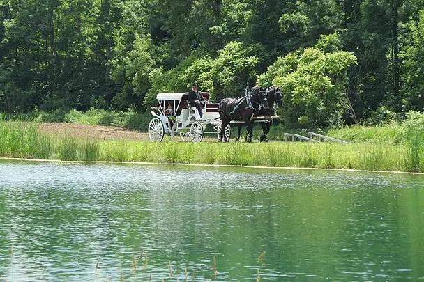 Barn Wedding Venues In Upstate New York Emmaline Bride