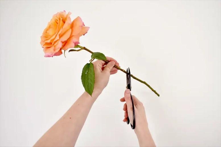 hanging-mason-jar-flowers-12