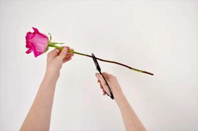 hanging-mason-jar-flowers-13