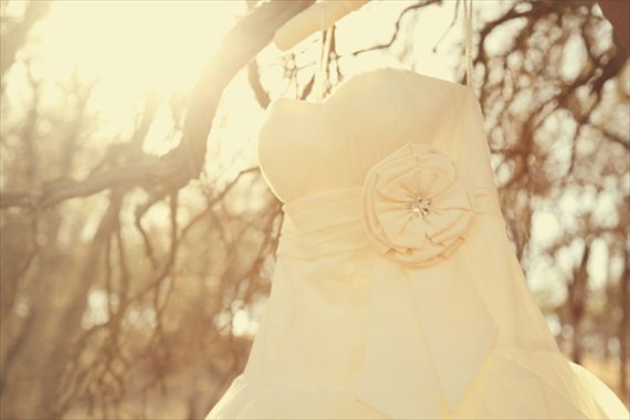 Drozian Photoworks - bride's dress - rustic diy barn wedding