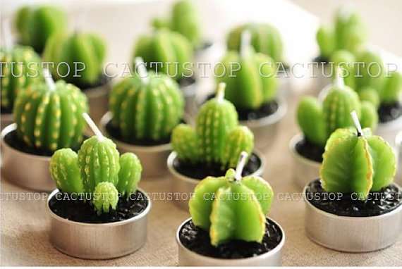 cactus top candles by cactustop