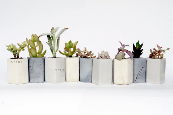 concrete planters for cactus weddings by encave