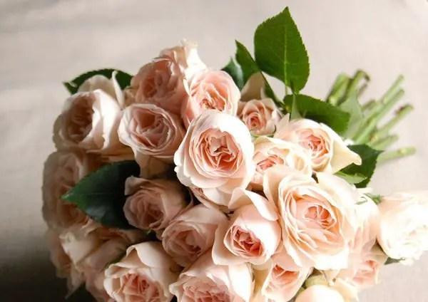 rose wedding bouquet - diy | rose bouquets weddings via http://emmalinebride.com/bouquets/rose-bouquets-weddings/