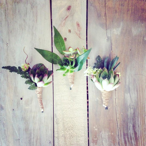 succulent boutonnieres for rustic wedding | via What Kind of Boutonniere to Pick (and Why) http://emmalinebride.com/groom/what-kind-of-boutonniere/