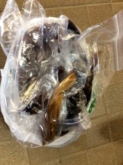 This bag of hair will be donated to Pantene Beautiful Lengths and made into wigs for cancer patients.