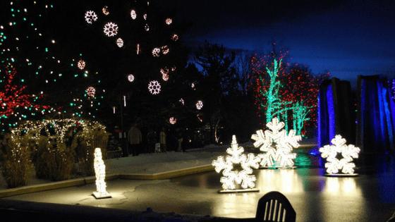Untitled design - Blossoms Of Light Denver Botanic Gardens December 10