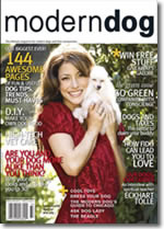 modern_dog07_cover_th