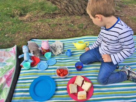 child having a picnic with teddies