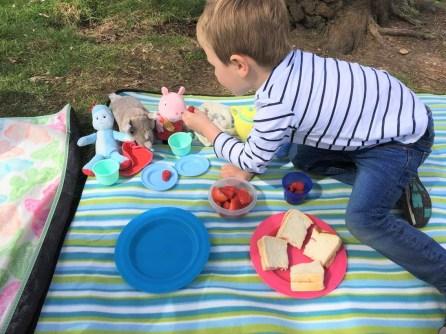 child having picnic with teddies
