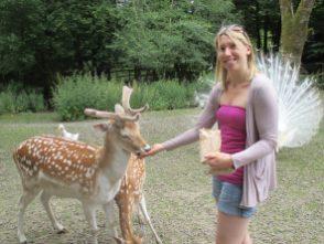 me feeding a deer