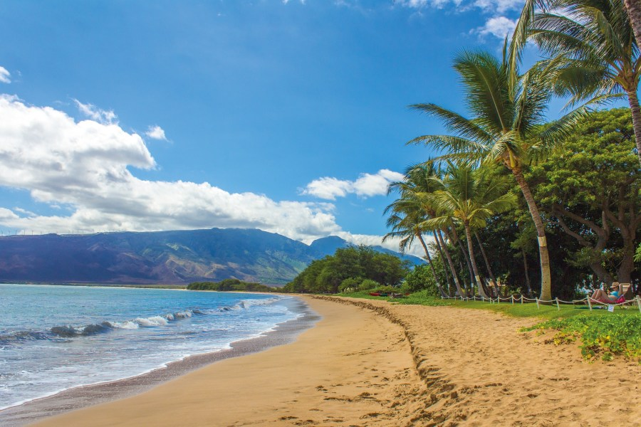 Hawaii beach