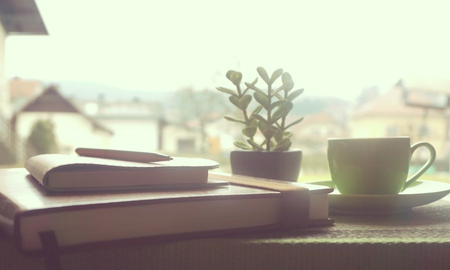 books, coffee and plant on a window sill