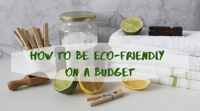 how to be eco-friendly on a budget