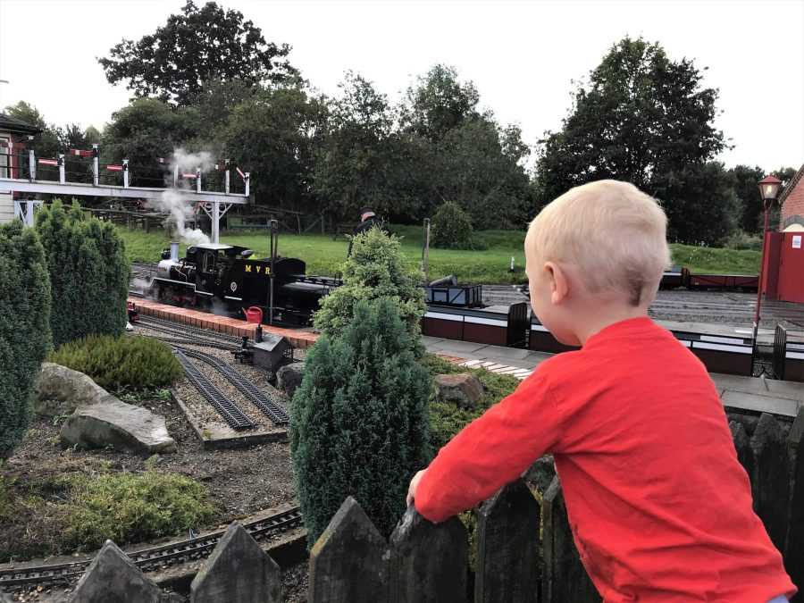 william watching the toy trains