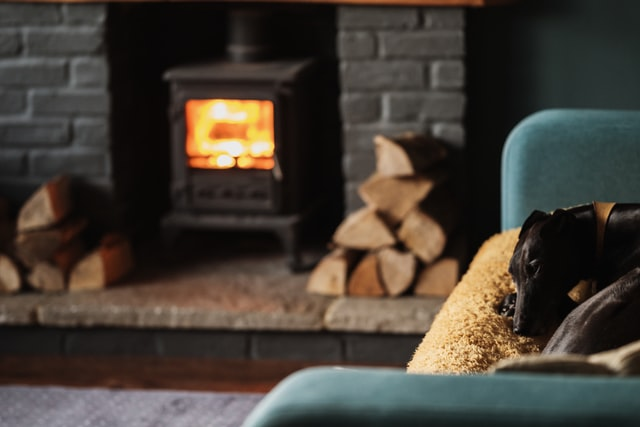 a log burner, sofa and dog laying on it