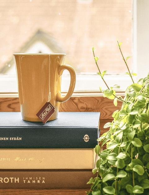 a mug on top of 3 books on a window sill