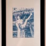 Tirage cyanotype encadré – Le chêne abattu
