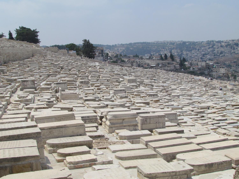 Mount of Olives  Emmas Hope Book