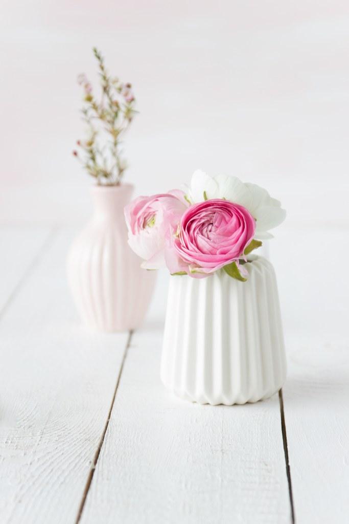 Ranunkeln in weißer Vase