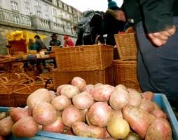 Pots & Baskets; Farmer's Market, Prague.