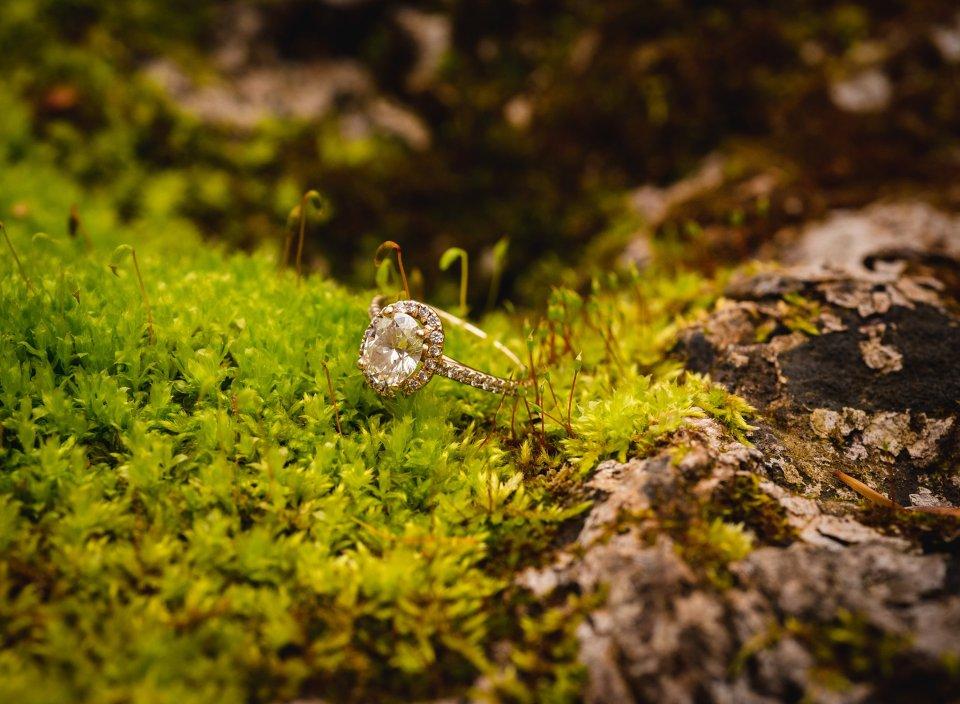 diamond ring in moss