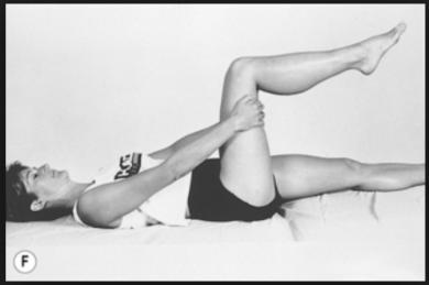 hipleg-flexion-and-extension-prone