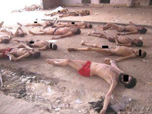 Rapport César les détenus exécutés dans les prisons du régime d'Al-Assad9