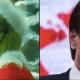 """Natale, Figuccia (Lega): """"Conte come il Grinch"""""""
