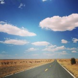 The Road Less Travelled - WIY