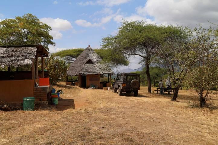 Amarular camp