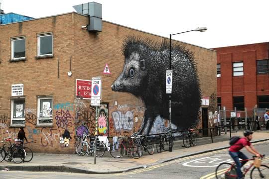 Street Hedgehog