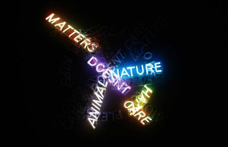 Bruce-Neuman-(ATWF)-Human-Nature,-Life-Death,-Knows-Doesn't-Know