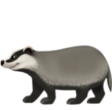 Badger on Apple iOS 12.1